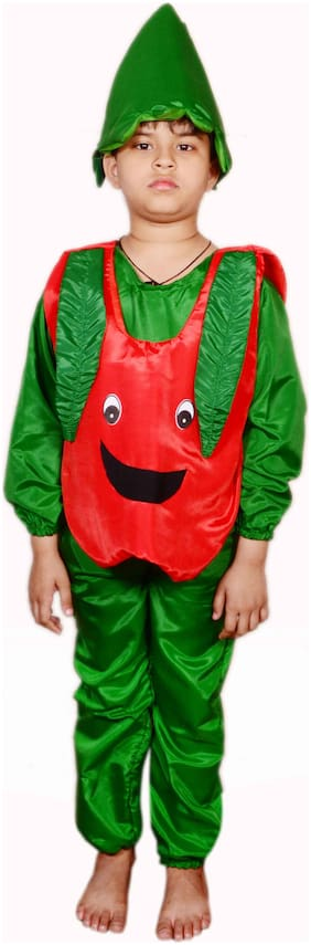 AD APPLE FANCY DRESS FOR 8-9 YEAR KIDS|APPLE COSTUMES| USE FOR SCHOOL COMPETETIONS,EVENTS & ANNUAL FUNCTIONS