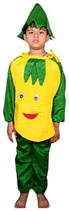 AD Mango Fancy Dress | Kids Mango Costume & fancy dress | Mango Dress | Use for school competitions, Events, Annual Functions.