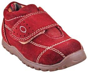 Beanz Multi-Color Boys Casual shoes
