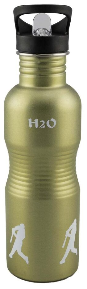 Anni Creations Athletic Ss Bottle ( Green )