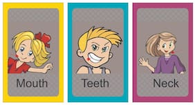 Body Parts Educational Flash Cards