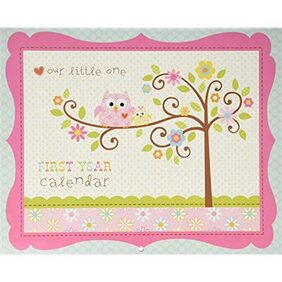 C.R. Gibson First Year Calendar  Stickers Provided  Measures 11 x 18 - Happi Baby Girl