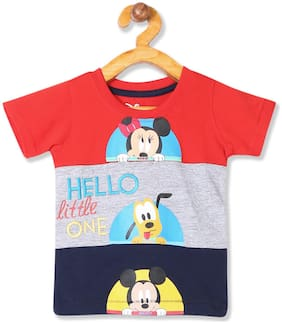 Colt Cotton Colorblocked T shirt for Baby Boy - Multi