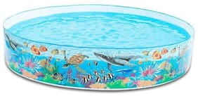 crazy toys 8 Feet Round Coral Reef Snapset Pool.