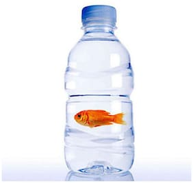 Fish in a bottle-magic, stage magic, Conjuring Magic, illusions, bottle magic, comdey magic tricks, gimmick
