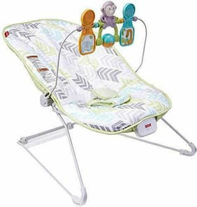Fisher-Price Baby's Bouncer Green/Blue/Grey