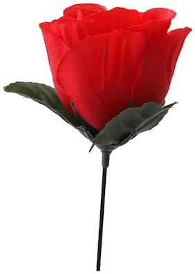 Futaba Romantic Stage Magic Rose Trick