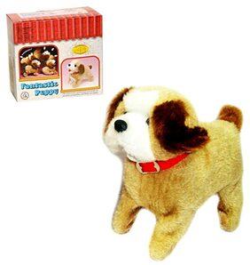 HAPPINESS Robot Dog