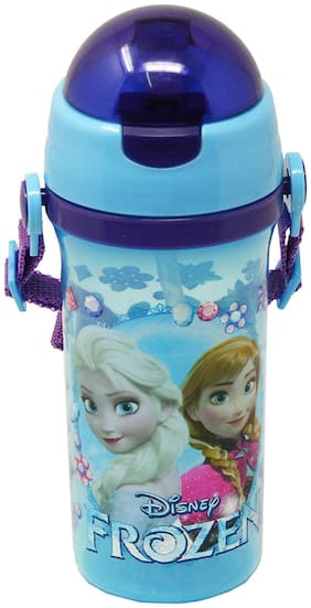 HM International GENUINE Licensed Disney Frozen Sisters Character Plastic Sipper Water Bottle
