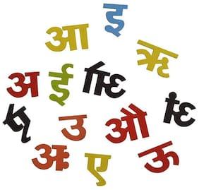 Magnetic Alphabet Hindi Varnmala  (Multicolor)