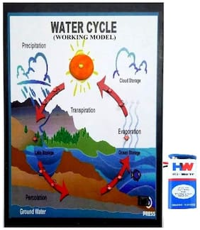 Melody's Water Cycle or Hydrologic Cycle - with Light Geography Science Project & Model