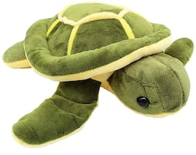 Pikaboo Soft Adorable Stuffed Toy Green Turtle Cuddly Toy