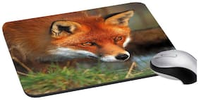 RADANYA Fox Mouse Pad (Brown )