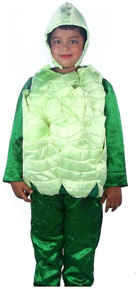 SBD Cabbage Vegetable Fancy dress costume for kids