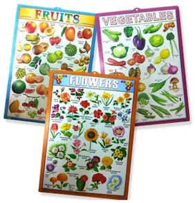 Set of 3 - 3D Emboss Kids Learning Wall Charts (Fruits, Vegetables and Flowers)