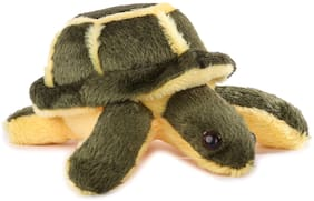 BAPU BETA  Soft Toy Tortoise