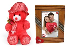 Tickles Flower Teddy and Love Photo Frame Soft Toy Gift Set ()