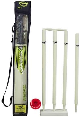 WASAN Cricket kit -size 5-(10-16 years)