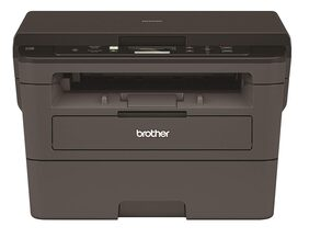 Brother Dcp-l2531dw Print Laser Monochrome Printer