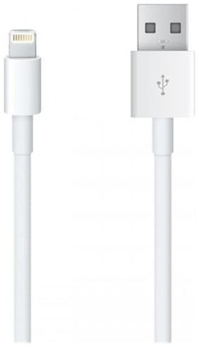 Apple Power Bank Cable Small In size best to use with power bank RME20