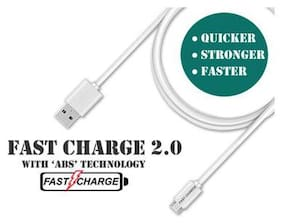 FAST CHARGE 2.0 V8 USB DATA CABLE FOR ANDROID DEVICES (WHITE)