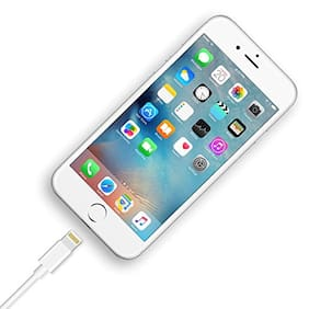 Fast Lightning USB Data Charging Cable for iPhone, iPad Air iPad Mini iPod Nano and iPod Touch (White)