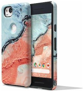 Google Earth Live Series River Case for Google Pixel 2 Smartphone - River