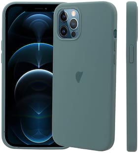 Apple iPhone 12 & Apple iPhone 12 Pro Silicone Back Cover By LIRAMARK ( Green )