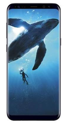 Samsung Galaxy S8 Plus 64 GB (Midnight Black)