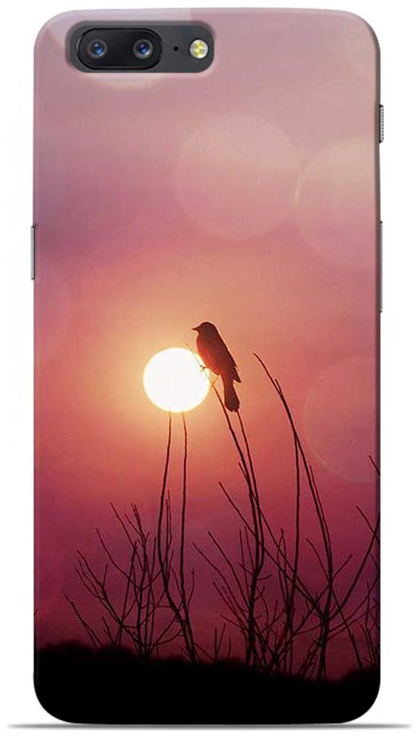 Sowing Happiness Polycarbonate Back Cover For OnePlus 5   Multi