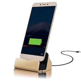 Gold & Grey Dock Charger