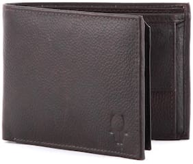 Wildhorn Brown Genuine Leather Hand Crafted Wallet