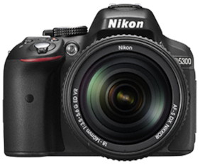 Nikon D5300 Kit (AF-S 18-140 mm VR Lens) 24.2 MP DSLR Camera (Black) + FREE Nikon DSLR Bag + 16GB Memory Card