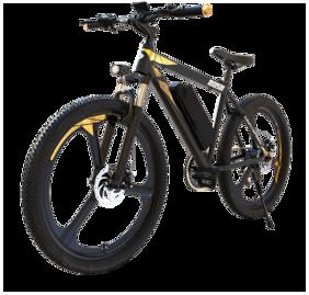 LIGHTSPEED Rush 11.6Ah Electric Bicycle
