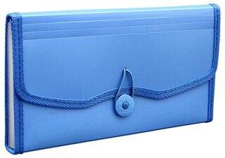 Solo Expanding Elastic Cheque Case (12 Section)