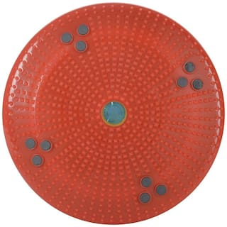 Acupressure Twister Body Weight Reducer - DISC For ACUPRESSURE HEALTH CARE SYSTEMS HYDERABAD