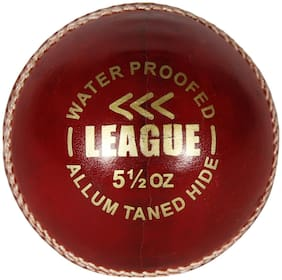 AVER LEAGUE CRICKET LEATHER BALL
