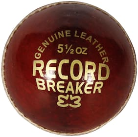 AVER RECORD BRAKER CRICKET LEATHER BALL