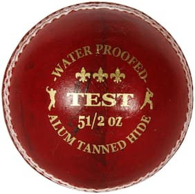 AVER TEST CRICKET LEATHER BALL