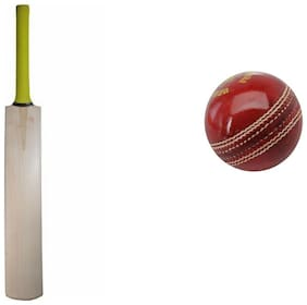 best quality poplar cricket bat with 2piece leather ball