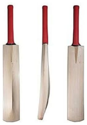 best quality poplar willow bat with a tennis ball