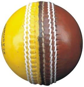 Ceela Sports Crown Cricket Training Ball