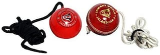 Cw Cricket Hanging Ball (Pack Of 2)