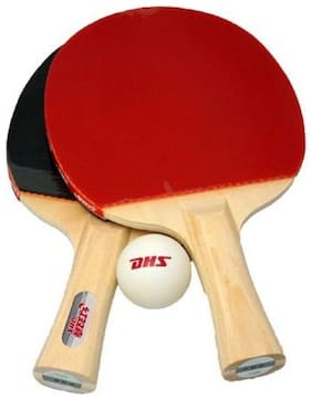 DHS TYPE III  Table Tennis Set