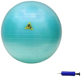 Fitness Pro Gym Ball  (With Pump)