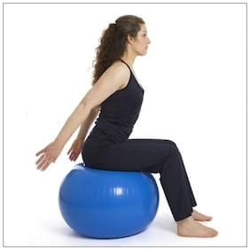 Fitness Sports 65cm Anti Burst Gym Ball Exercise Yoga Ball