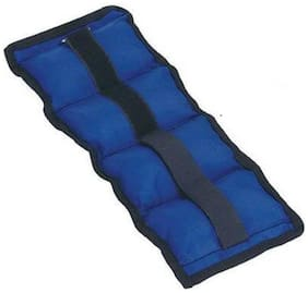 GLS Ankle Weight Blue 2500 gm Weight