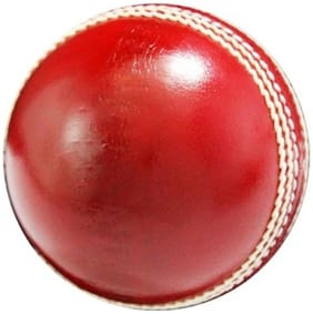 GLS Genuine Leather 4 Piece Cricket Ball Standard Size 5.5 - Pack of 1