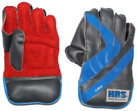 HRS College Wicket Keeping Gloves (Youth, Multi-color)