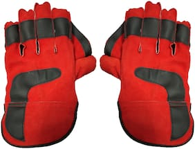 JMO27Deals Tournament Cricket Wicket Keeping Gloves(Red)